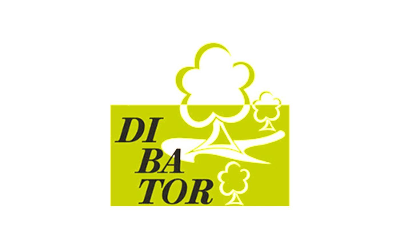 Standard-Beitragsbild - DIBATOR GmbH & Co KG