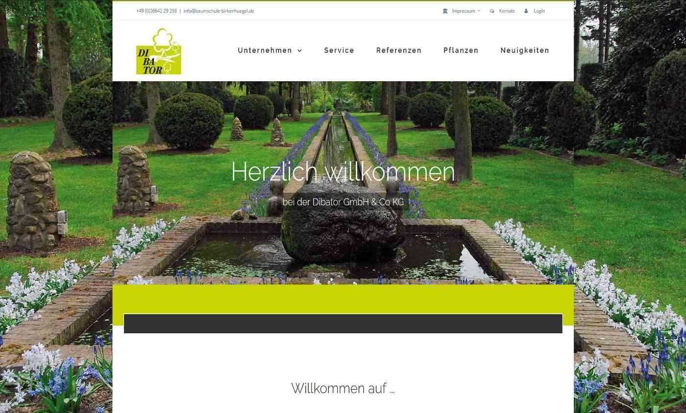 Screenshot der Startseite - DIBATOR GmbH & Co KG