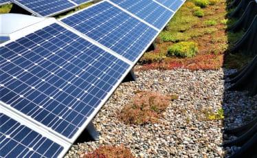 Referenzbild - Dachpflege SERAG WIESSNER Solarfeld